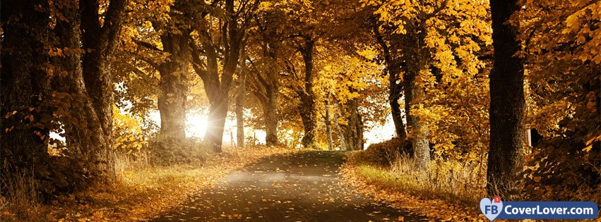 10-21-2016-autumn-forest-3-facebook-covers-fbcoverlover_facebook_cover