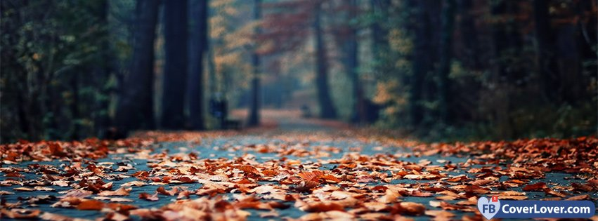 10-21-2016-autumn-forest-leaves-facebook-covers-fbcoverlover55_facebook_cover