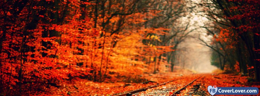 10-21-2016-autumn-forest-and-rails-facebook-covers-fbcoverlover_facebook_cover