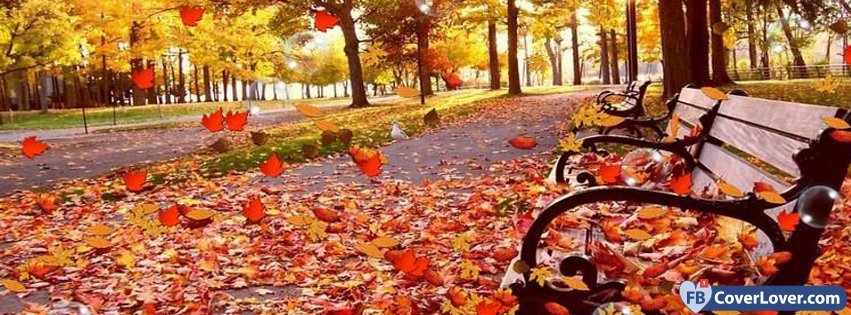 10-21-2016-park-bench-autumn-facebook-covers-fbcoverlover_facebook_cover