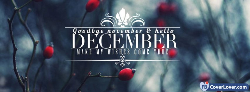 11-30-2016-goodbye-november-hello-december-facebook-covers-fbcoverlover-facebook-cover
