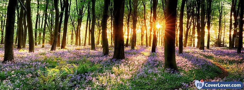 Springtime - Blog : FbCoverLover